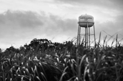 Sugar Cane Photography White Castle Louisiana28
