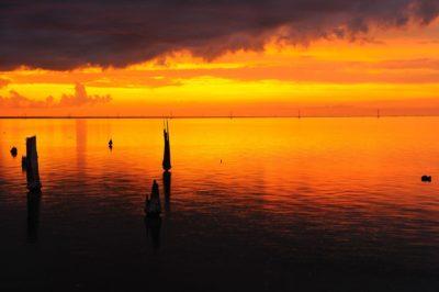 Bonne Carre Spillway Sunset