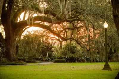 Houmas House Louisiana Plantation Wedding65