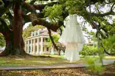 Best Professional Luxury Dream Wedding Photography of Brides Dress Outdoor Oak Tree Backdrop at Houmas House Plantation LouisianaPhoto 31