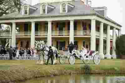 Best Professional Luxury Dream Wedding Photography Horse Carriage Bride Groom at Houmas House Plantation Louisiana Photo 93
