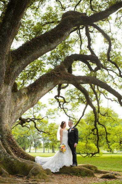 Oak Alley Plantation Weddings12