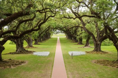 Oak Alley Plantation Weddings13