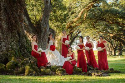 Oak Alley Plantation Weddings32