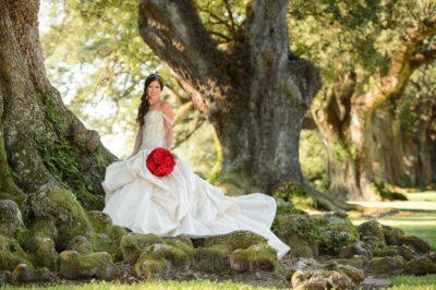 Oak Alley Plantation Weddings33