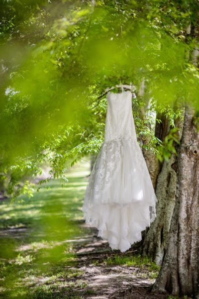 Oak Alley Plantation Weddings4