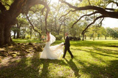 Oak Alley Plantation Weddings8