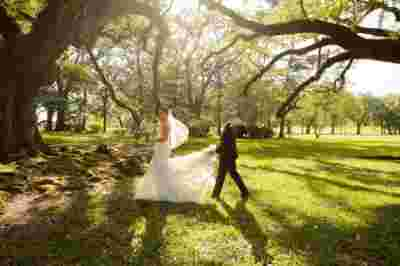 Oak Alley Plantation Weddings8