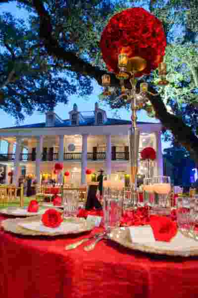 Oak Alley Plantation Weddings46